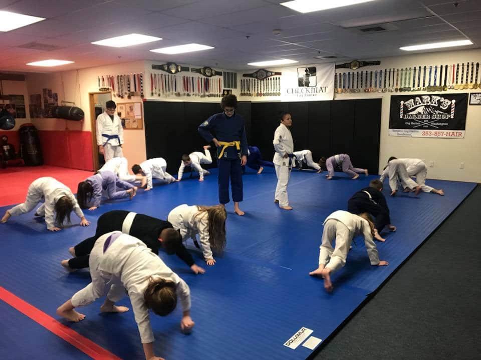 Gig Harbor MMA Programs image